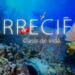 Documental «Arrecifes. Osasis de Vida»