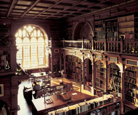 Biblioteca Harry Potter