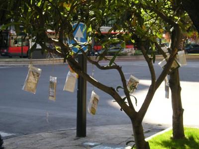 El movimiento BookCrossing en la UCV