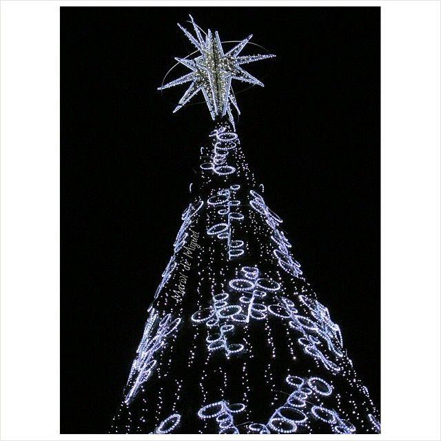 árbol de navidad 2018