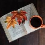 5 novelas imprescindibles para leer en otoño