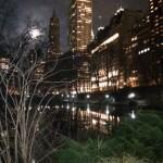 ¡DERECHO UCV EN LA ONU (II)! Sucedió en Manhattan