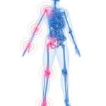 Se convoca la nueva edición del Máster Universitario en Osteopatía estructural