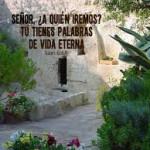 Reflexión Sabado 2 de mayo