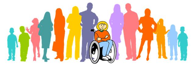 inclusion Discapacidad