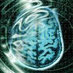 Análisis del genoma del autista
