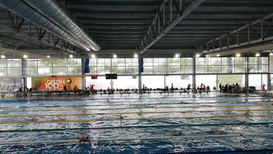 UCV natación