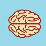 Cannabis y efectos cognitivos.