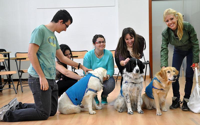 Instantánea con animales tomada en la Jornada de Actualización con motivo del Día Internacional de la Terapia Ocupacional