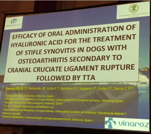Interesante ponencia del servicio de Ortopedia y Traumatología en Venecia