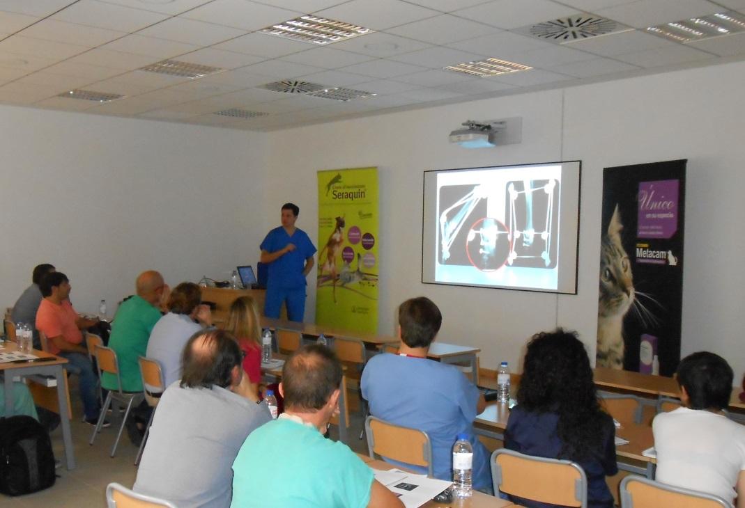 Jornada sobre la artrodesis de carpo y tarso en el Hospital Veterinario de la Universidad Católica de Valencia