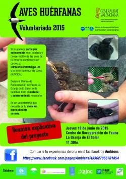 La UCV y el voluntariado con aves huérfanas