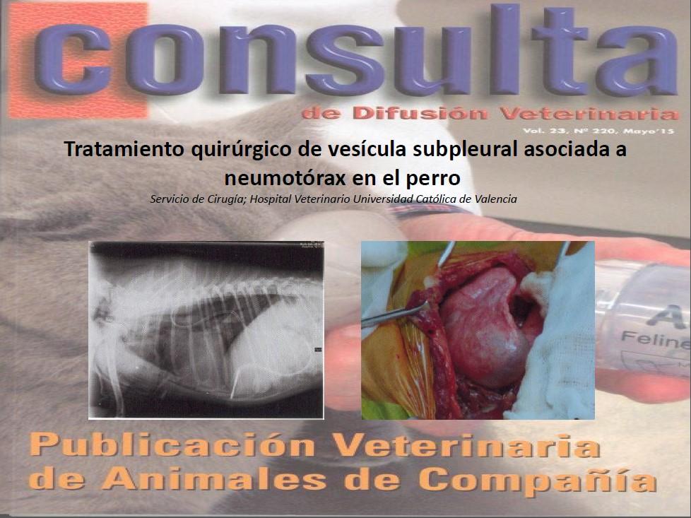 tratamiento quirúrgico de la vesícula pleurales.