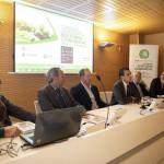 Cardells participa en la obra del Centenario del Valencia