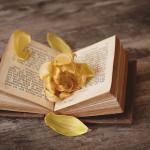 NOVEDADES BIBLIOGRÁFICAS NOVIEMBRE 2018