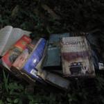 Cómo… recuperar libros mojados
