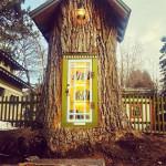 De árbol a biblioteca
