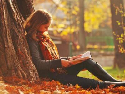 libro-knPC-U9017586608GIH-624x385@Ideal