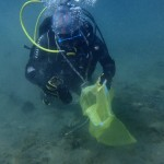Grado en Ciencias del Mar: respuesta a problemas medioambientales