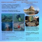 II Recogida de residuos marinos de los fondos del puerto de Calpe