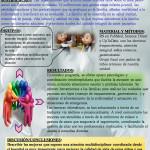 p104. Programa de Atención integral a niños con enfermedades crónicas en nuestra Unidad de Pediatría