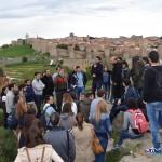 Peregrinación a Ávila I