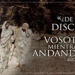 Reflexión del 7 de abril, miércoles de la Octava de Pascua