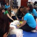 Fotograma de una actividad con animales en la Jornada de Actualización con motivo del Día Internacional de la Terapia Ocupacional
