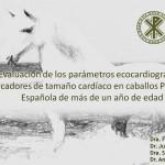 XVIII Congreso Internacional de Medicina y Cirugía equinas